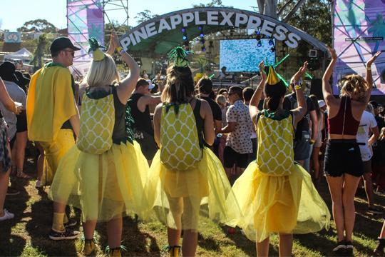 triple j Unearthed at the Big Pineapple Festival!
