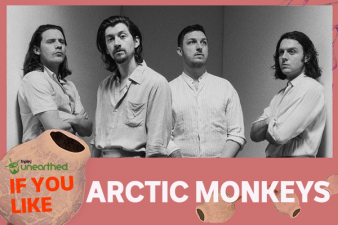 If You Like... Arctic Monkeys