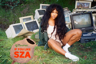 Love SZA? Meet these five artists.