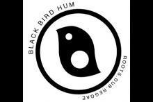 Black Bird Hum