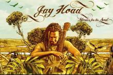 Jay Hoad