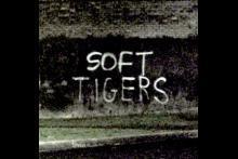 soft tigers