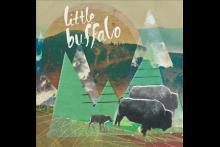 Little Buffalo