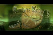 Gambirra