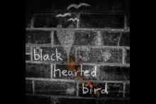 Black Hearted Bird