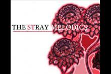 The Stray Melodics