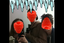 The Frozen Raspberries