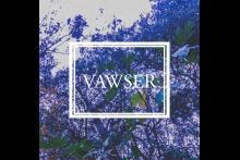 VAWSER