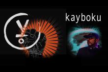 Kayboku