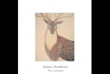 Dylan Hutchins