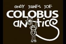 Colobus Antics