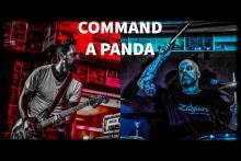 Command A Panda